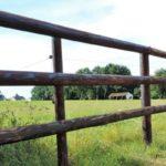 Terres agricoles en Mayenne – 18 hectares en moins à Bonchamp-lès-Laval
